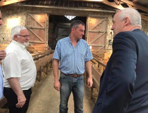 Rencontre avec Emmanuel Fontaine, éleveur ovins à Barisis-aux-Bois